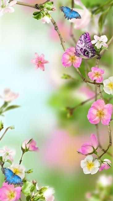 Красивые картинки вертикальные цветы011