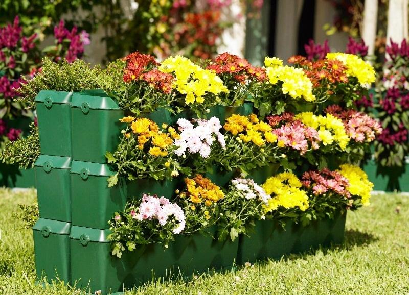 Красивые картинки вертикальные цветы017