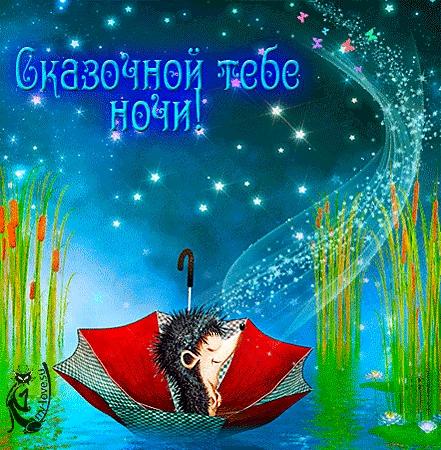 Красивые картинки ежик доброй ночи005