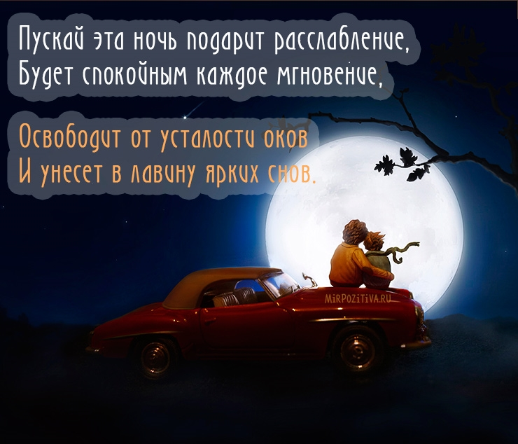 Красивые картинки ежик доброй ночи019