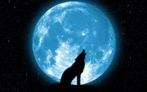 Красивые картинки луна и волк 027