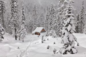 Красивые картинки начало зимы   подборка025