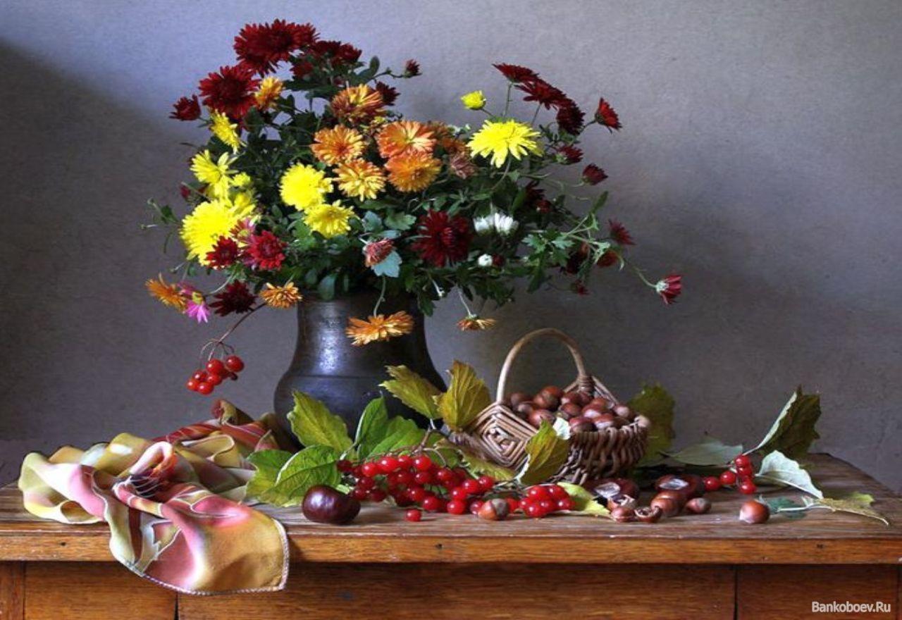 Картинки прозрачном, картинки осень цветы на рабочий стол