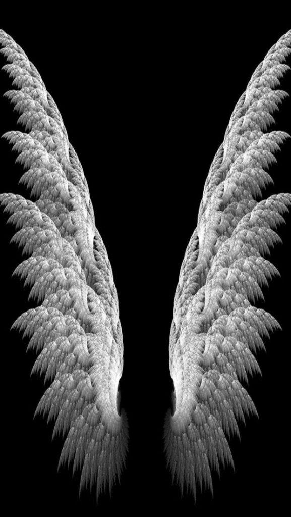 приготовить крылья ангела картинка в хорошем качестве прошлого года там