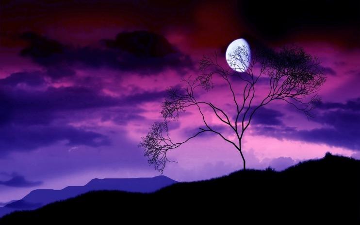 Красивые картинки с ночным небом 004