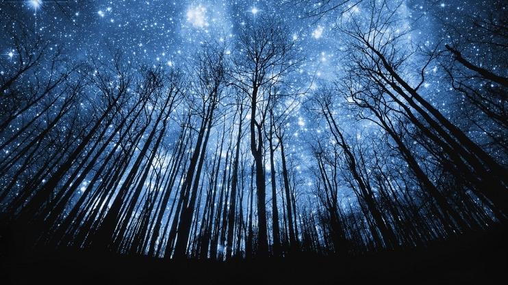 Красивые картинки с ночным небом 022
