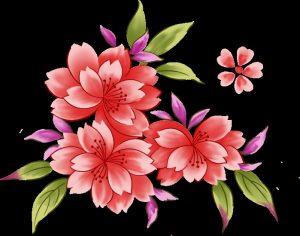Красивые картинки с цветами нарисованными 029