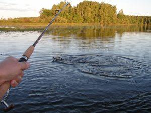 Красивые картины на тему рыбалка 013