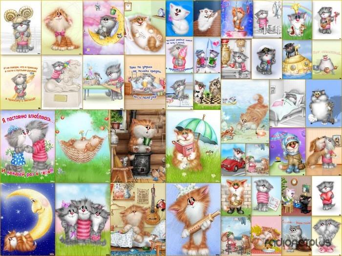 Красивые котята картинки на телефон 022