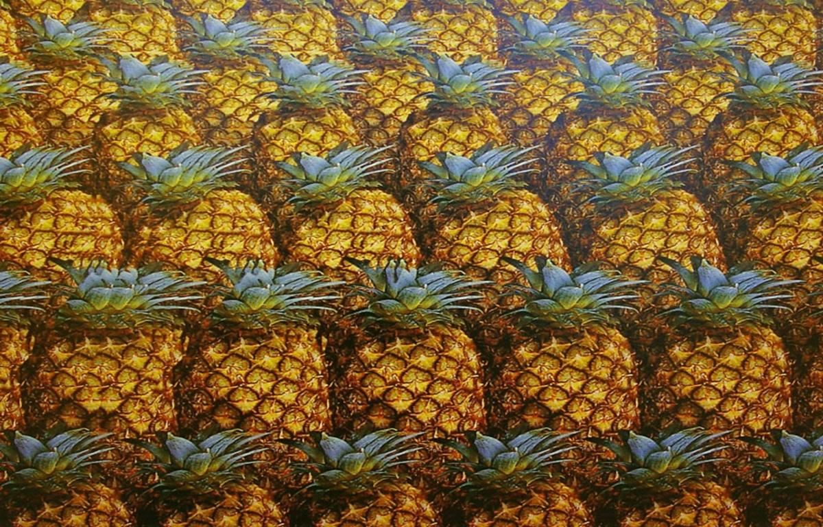 Красивые обои на телефон ананасы   подборка020