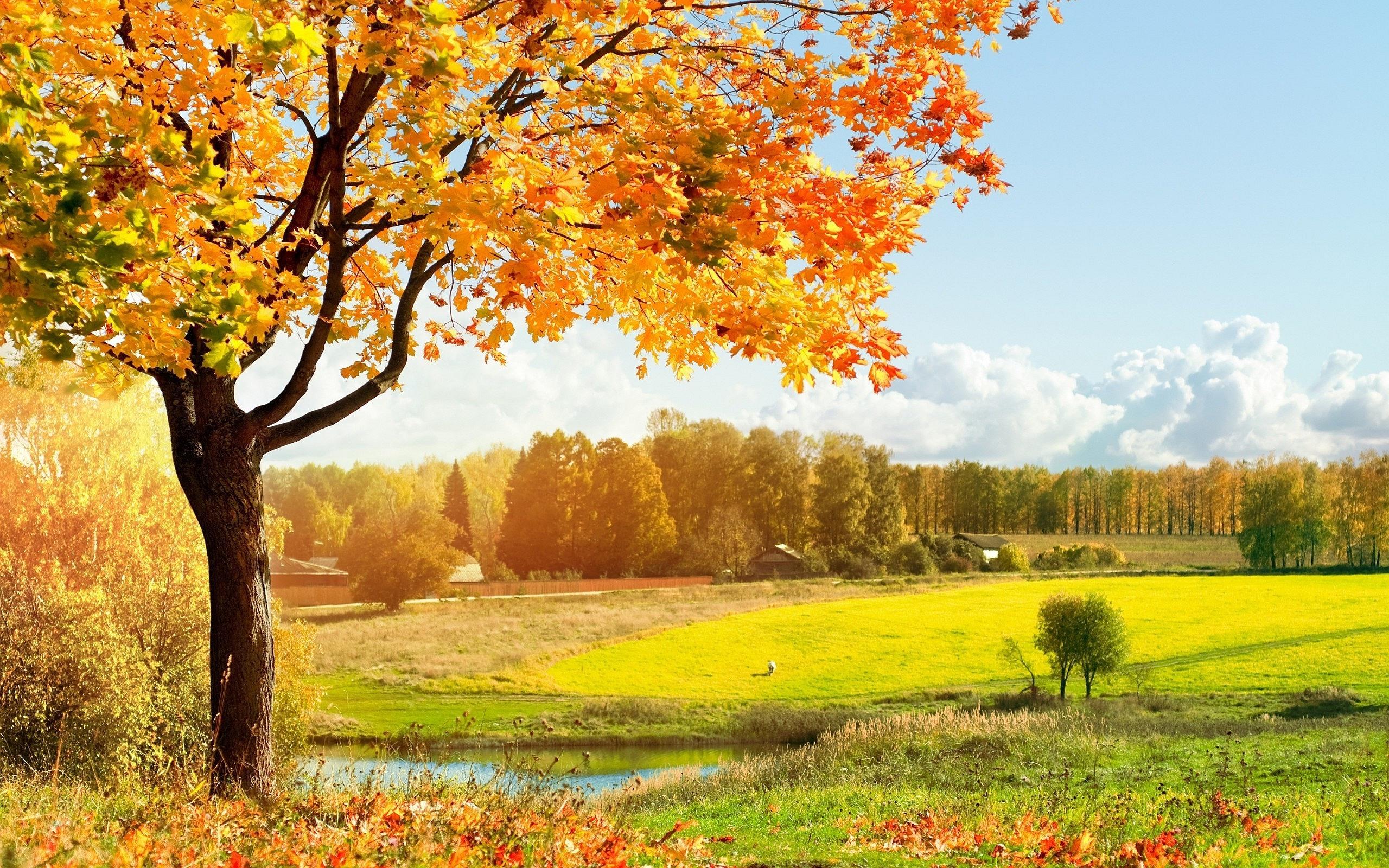 Красивые обои осень в деревне для рабочего стола (19)