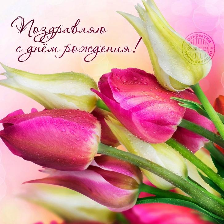Открытки с тюльпанами картинки