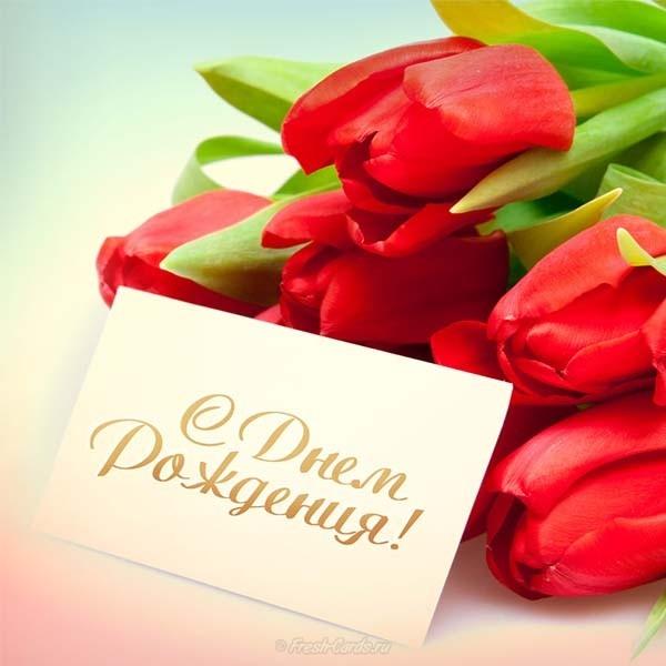 Красивые открытки с тюльпанами с днем рождения, надписями