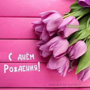 Красивые открытки с днем рождения с тюльпанами женщине028
