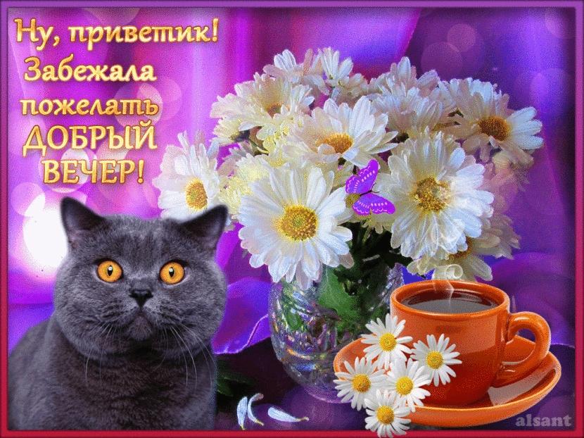 Фото открытка добрый вечер