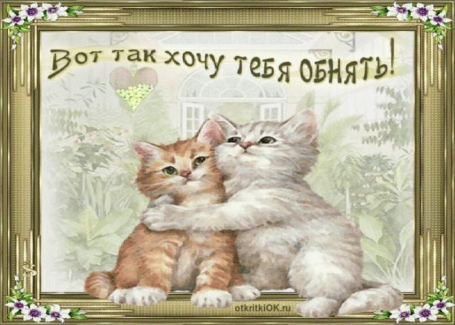Красивые открытки хочу тебя обнять015