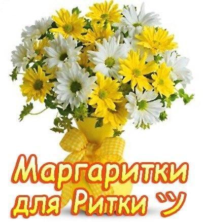 Лисы, открытка с днем рождения для риты