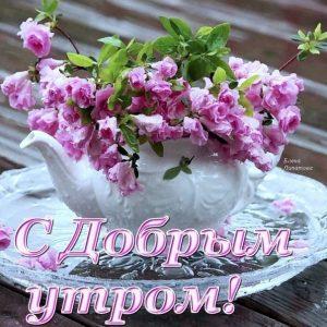 Красивые романтические открытки с цветами022