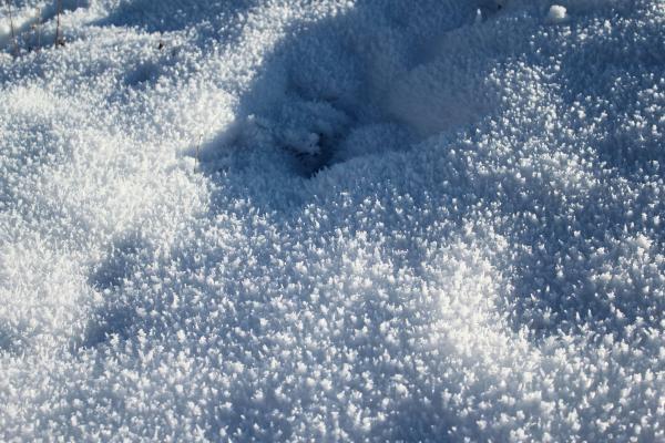Красивые со снегом картинки 029