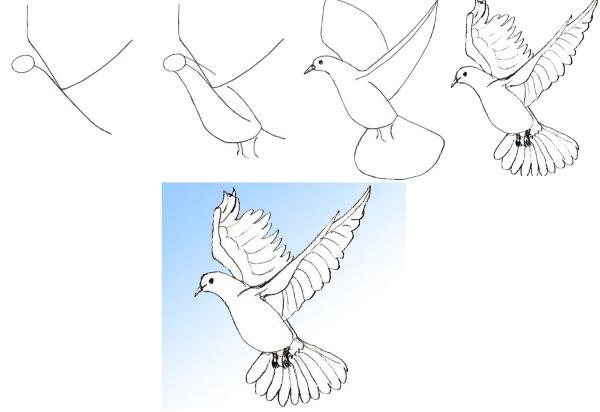 Красивые узоры легкие рисунки 017