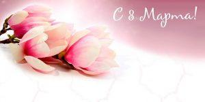 Красивые фотографии цветов для открытки   подборка 029