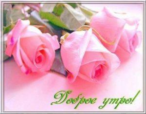 Красивые фото доброе утро Леночка 024