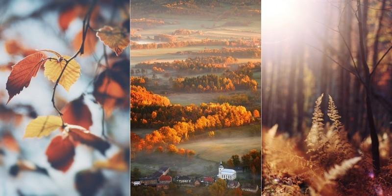 Красивые фото осень, кофе, плед   сборка 005
