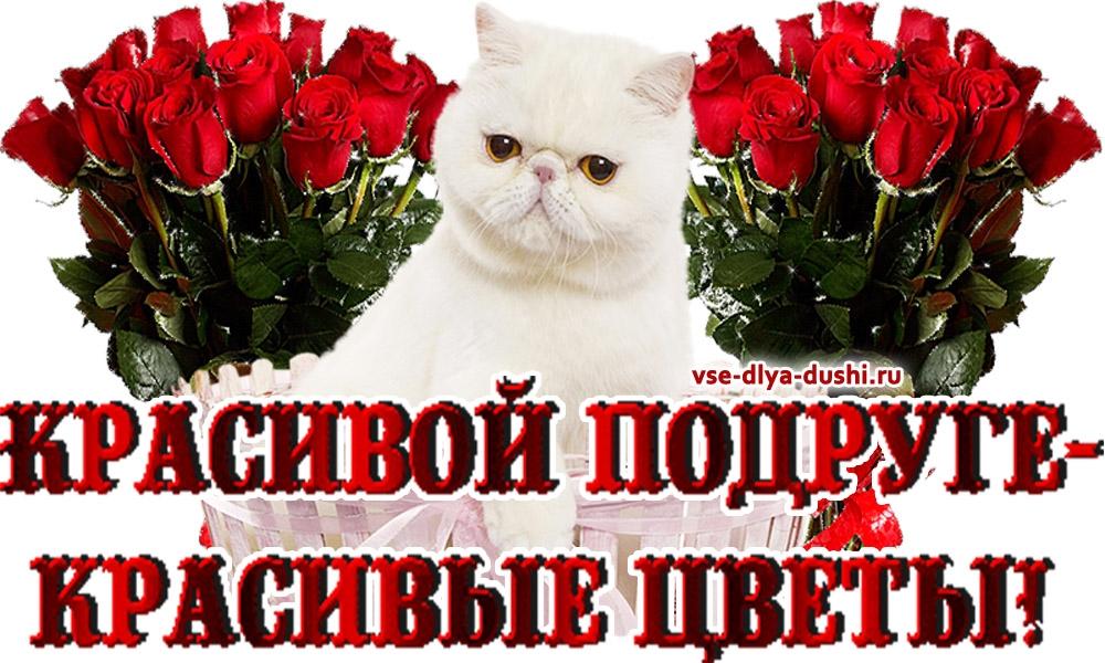 Красивые картинки с цветами для подруги