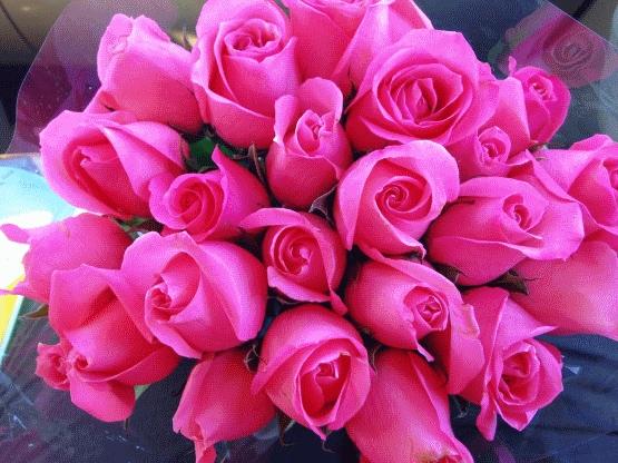 Красивые цветы любовь картинки и открытки005
