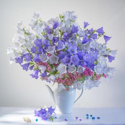 Красивые цветы любовь картинки и открытки007