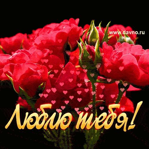 Красивые цветы любовь картинки и открытки021