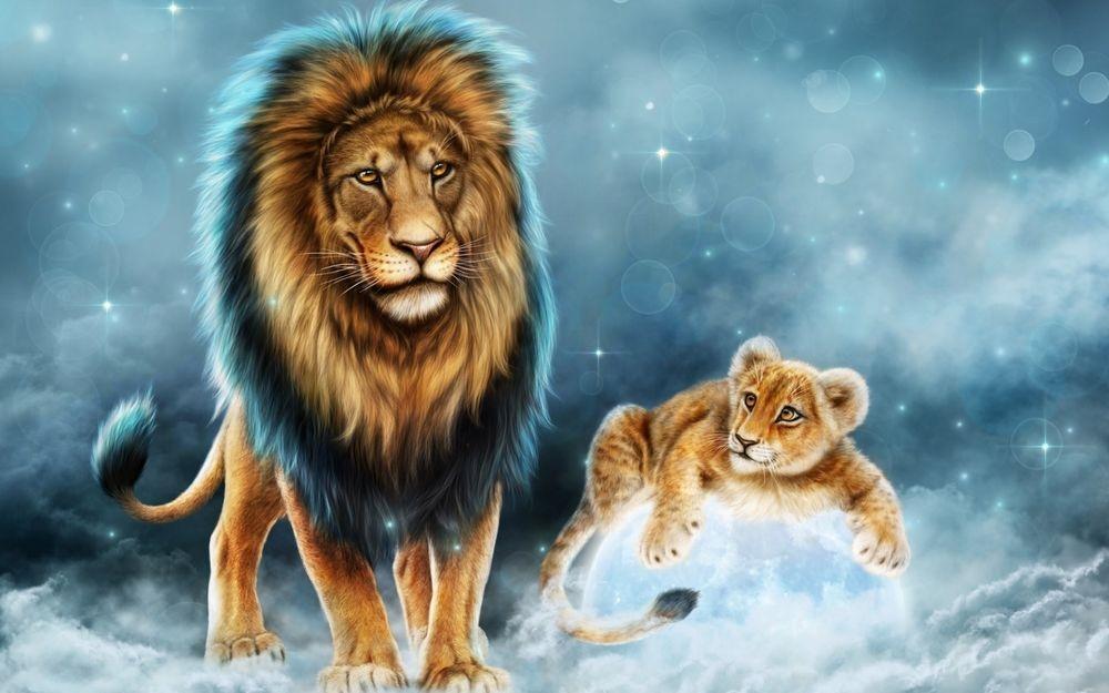 Лев и львенок картинки и фото 027