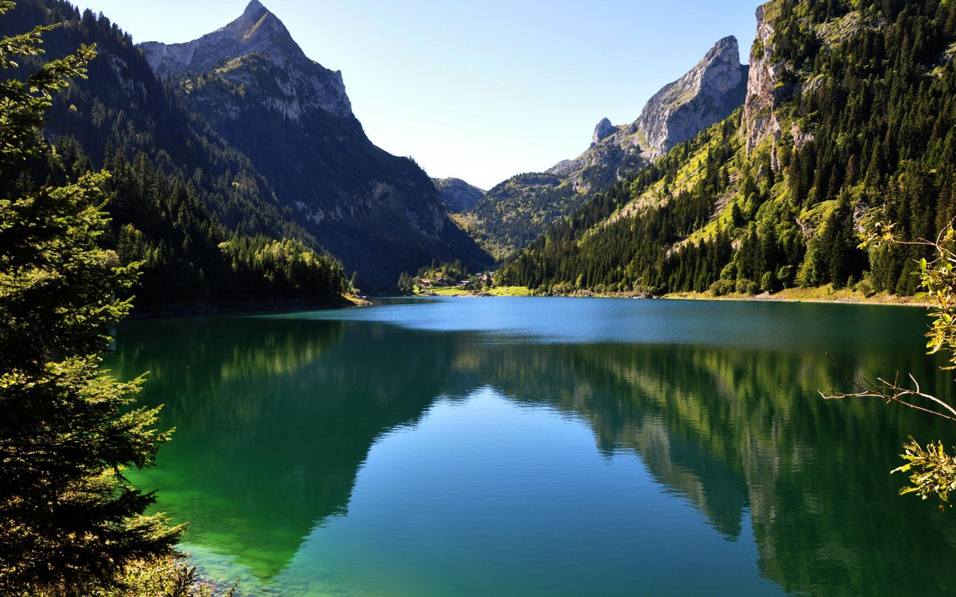 Лес горы и река картинки и обои (1)