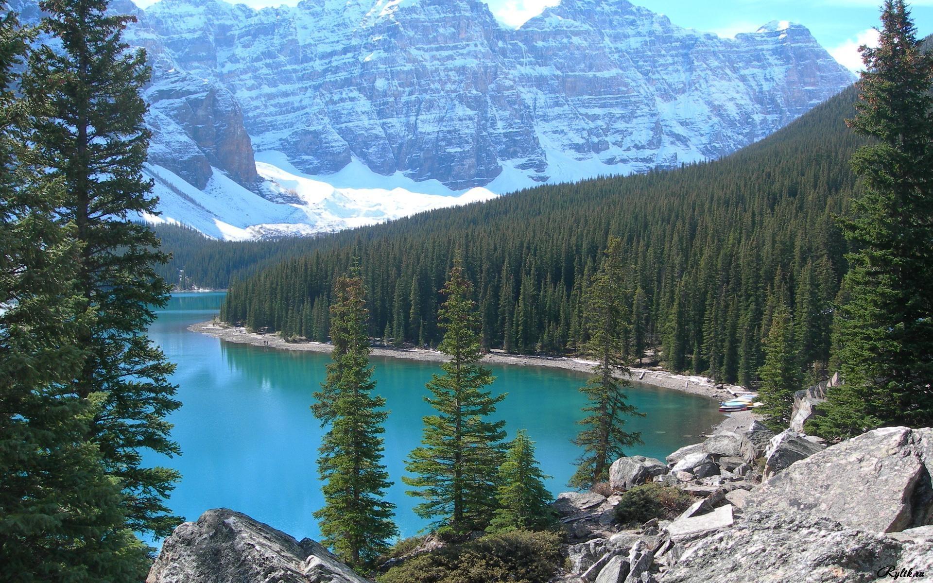 Лес горы и река картинки и обои (10)