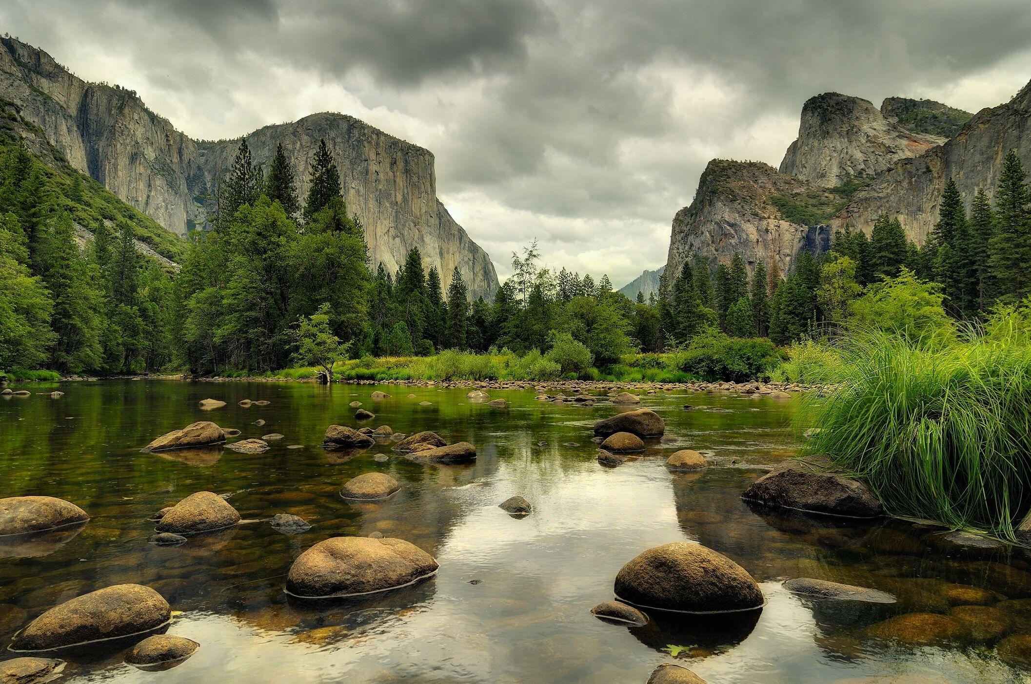 Лес горы и река картинки и обои (14)
