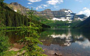Лес горы и река картинки и обои (19)