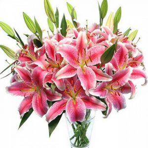 Лилии фото букеты цветы   подборка 022