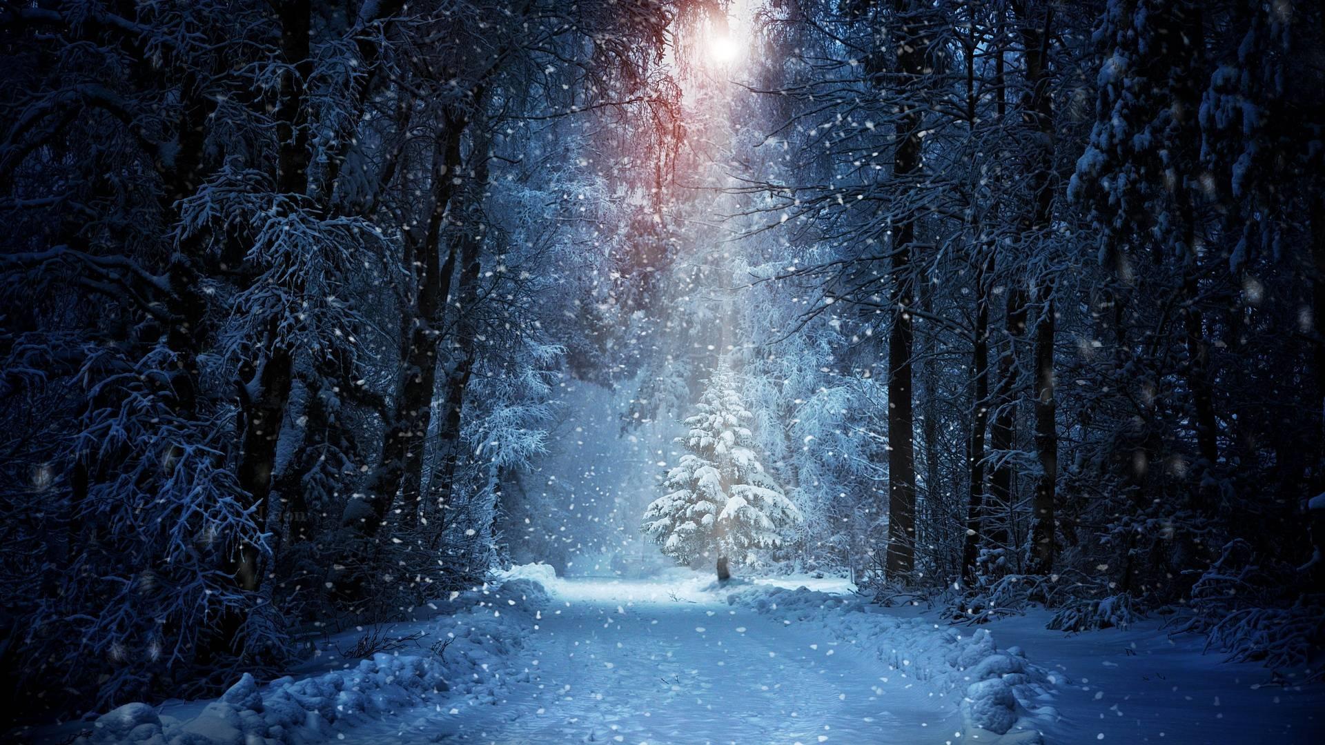 Лучшие картинки зимние на обои   подборка (1)