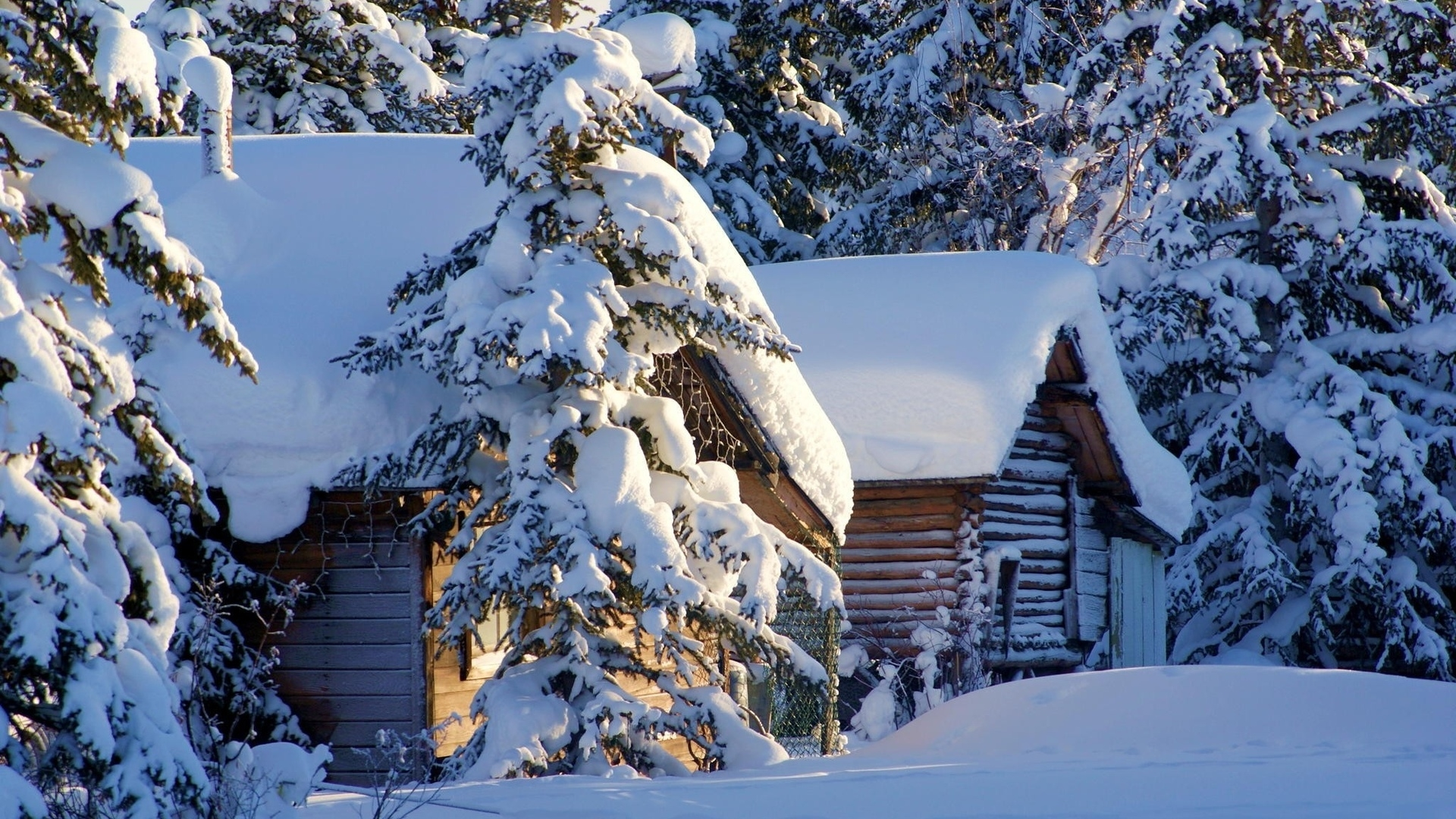 Лучшие картинки зимние на обои   подборка (11)