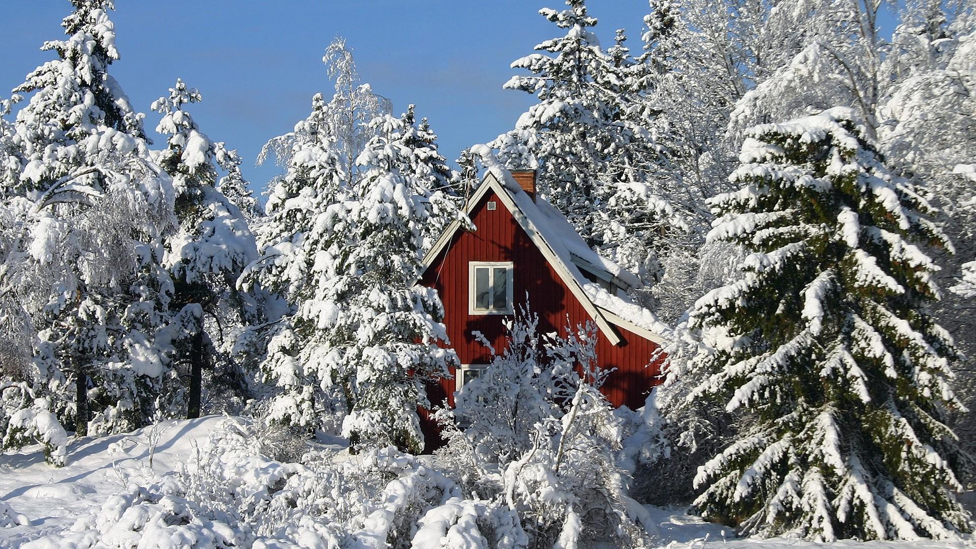 Лучшие картинки зимние на обои   подборка (12)