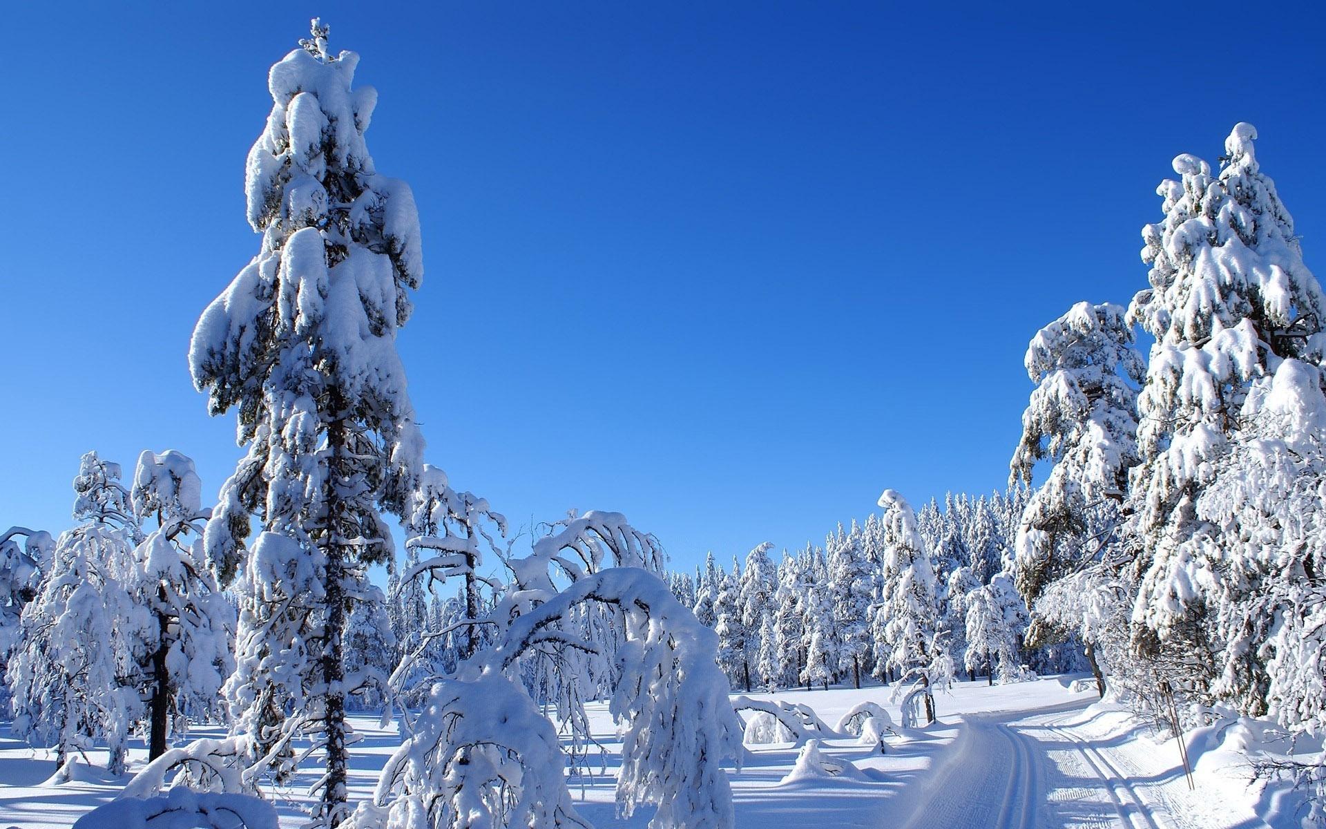 Лучшие картинки зимние на обои   подборка (14)