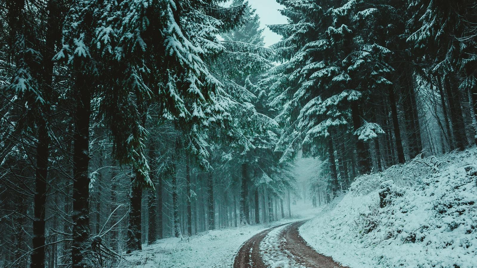 Лучшие картинки зимние на обои   подборка (15)