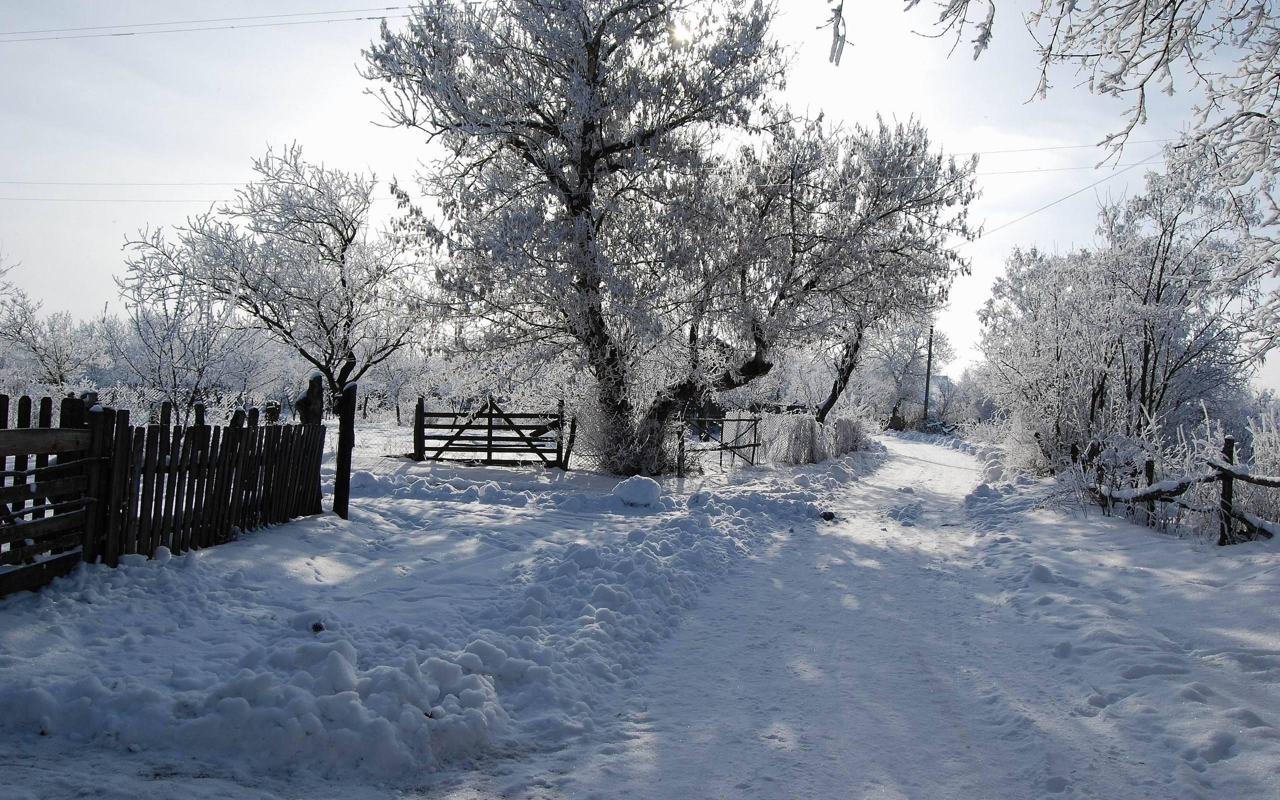 Лучшие картинки зимние на обои   подборка (6)