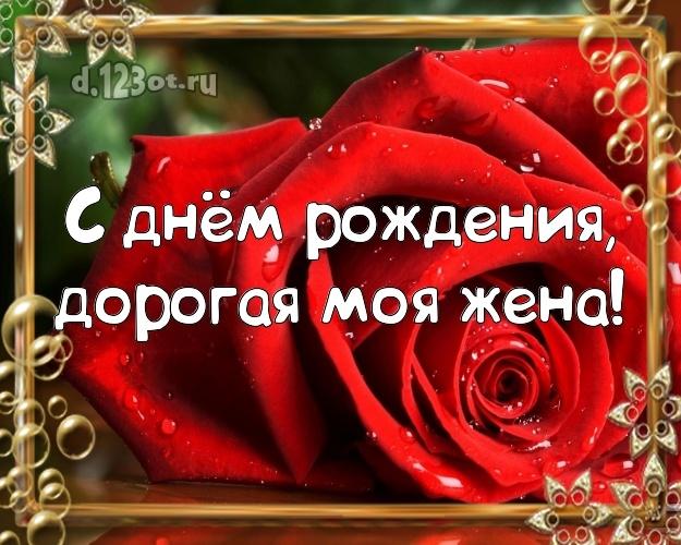 день рождения для любимой жены в москве что
