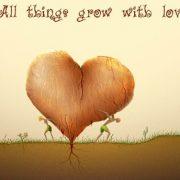 Любовь такая любовь картинки и фото 020