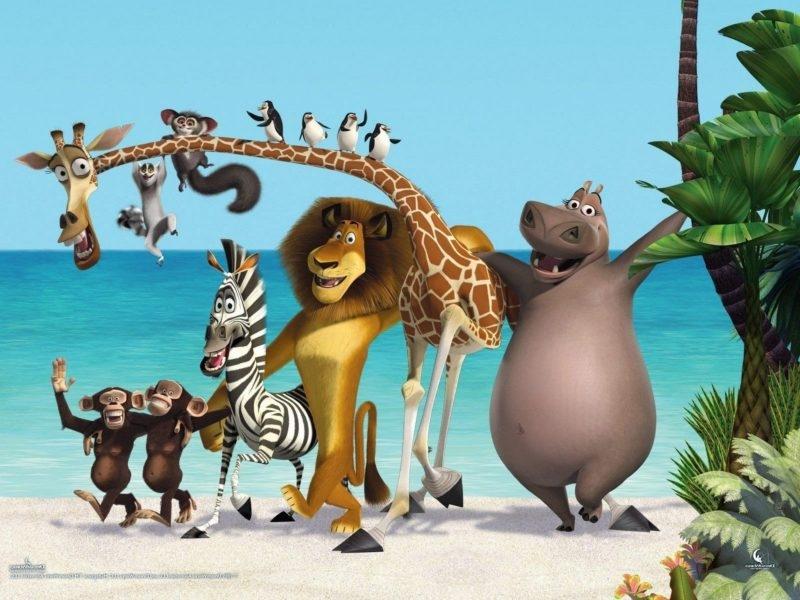 Мадагаскар фото из мультика013