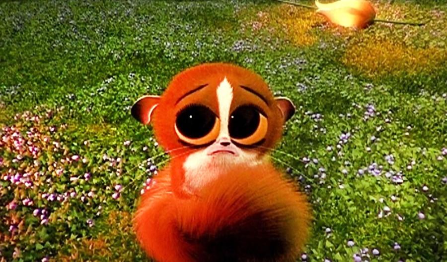 Мадагаскар фото из мультика014
