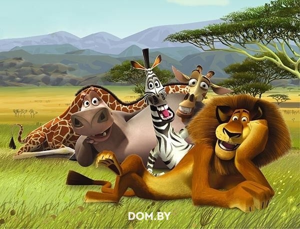 Мадагаскар фото из мультика018