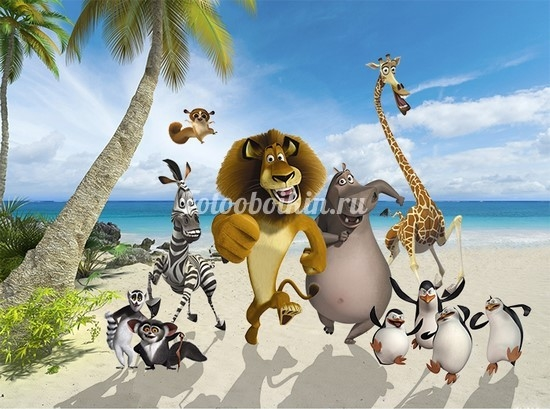 Мадагаскар фото из мультика020