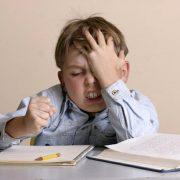 Мальчик делает уроки картинки 023
